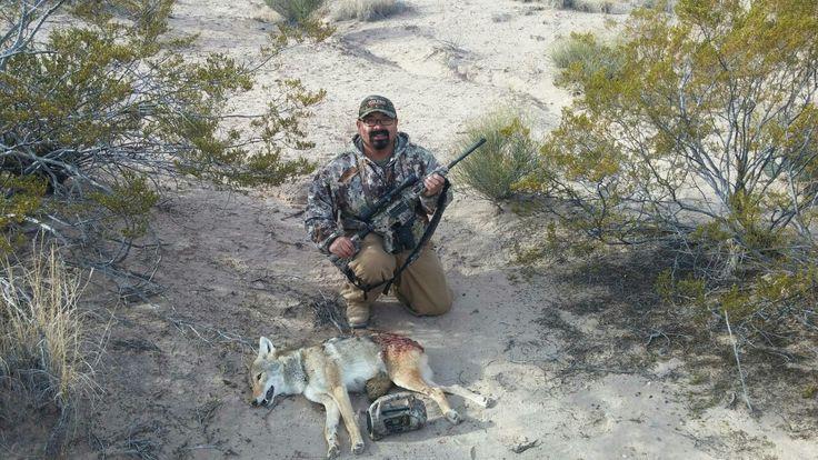 NM coyote hunt