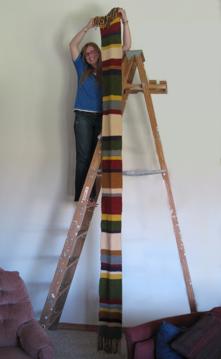 9 best i saw it i did it images on pinterest book for House doctor ladder