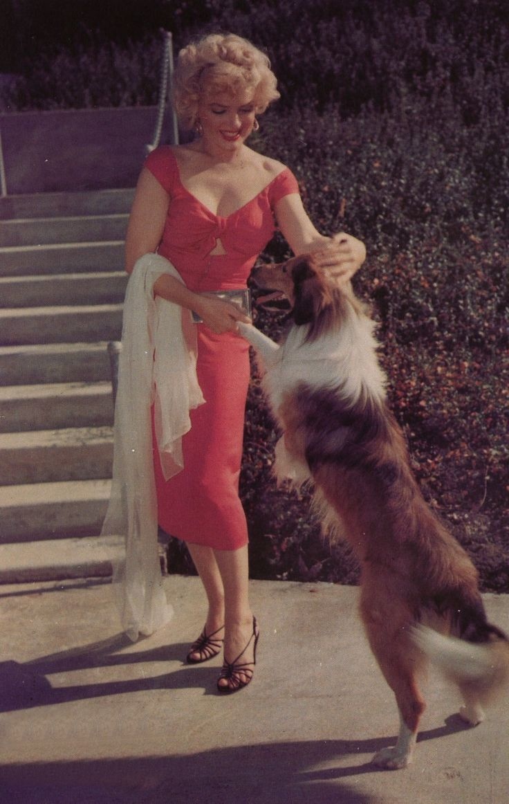 Marilyn Monroe and dog