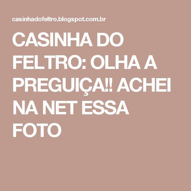 CASINHA DO FELTRO: OLHA A PREGUIÇA!! ACHEI NA NET ESSA FOTO