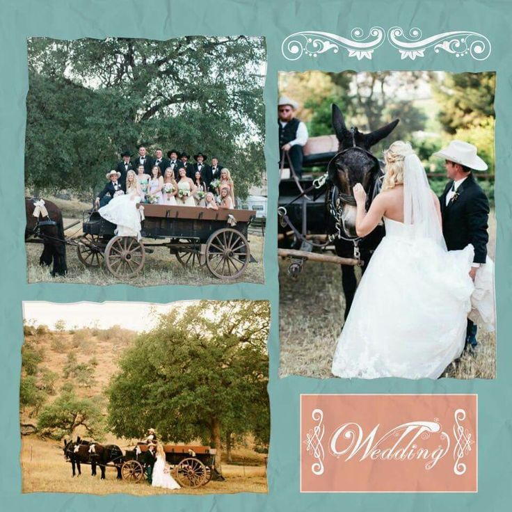 Cantrell's Mule Barn Events/Carriage Rentals