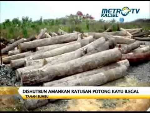 Dishutbun Tanah Bumbu Amankan Log Ilegal