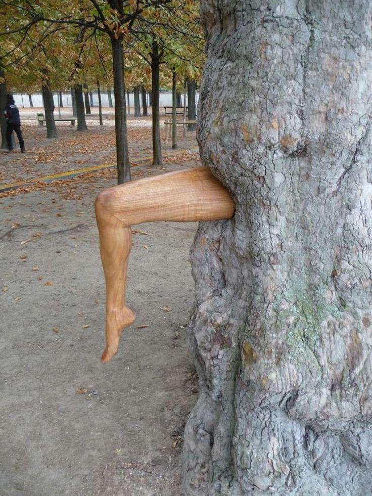 Les 25 meilleures id es de la cat gorie copeaux de bois jardin sur pinterest paillage bois - Copeaux de bois jardin ...