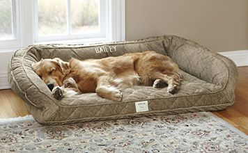 XXL Dogs 120+lbs. $379 Just found this Dog Beds - Deep Dish Dog Bed with Memory Foam -- Orvis on Orvis.com!