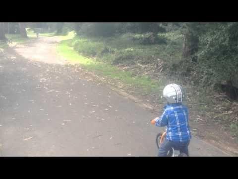 ByK Kids Bikes - Great Kids Bike Ride at Banksia Park Heidelberg