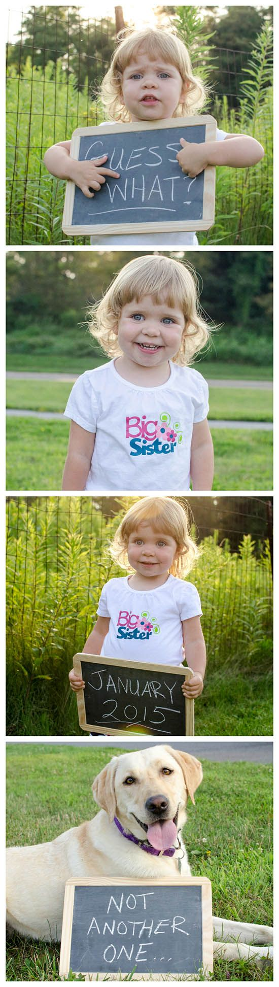 """Cute filmstrip """"big sister"""" pregnancy announcement with a chalkboard - plus the family dog, too!"""