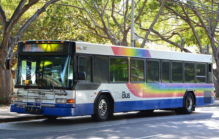 The Bus Hawaii Homeless Shelter Hawaii Things To Do Free Things To Do