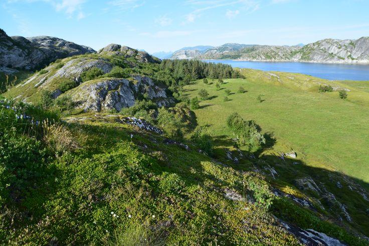 Nice landscape on an island just outside Bodø City