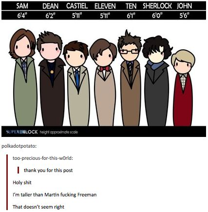 """SuperWhoLock height chart. I'm taller than John, Eleven, Castiel, Sherlock, Ten, and Dean. We have a """"life size"""" picture of Sam at work, and I'm taller than Sam's picture, but I don't really think it's life sized :)"""