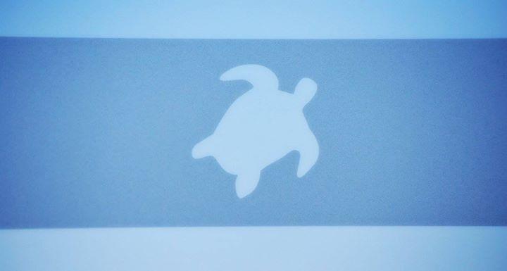 Helona, tartaruga, Kos, isola stupenda, mare strepitoso, cielo blu