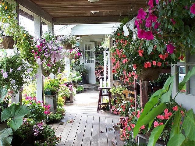 lovely lovely porch