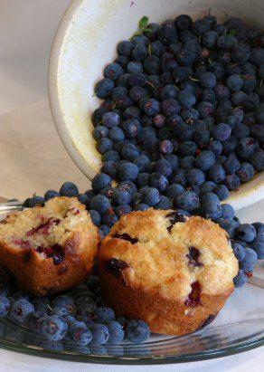 fresh blueberry recipes