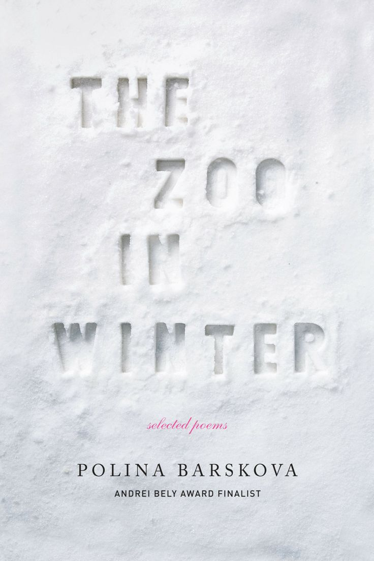 The Zoo in Winter book cover
