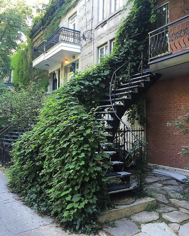 L'escalier vert! #escalierdemontreal #montrealstairs #escalier #stairs…