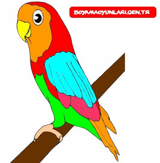 Papağan boyama sayfası boyaması bende böyle sende boya resmini ekle..