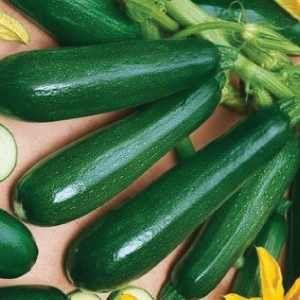 Cukkini-saláta:
