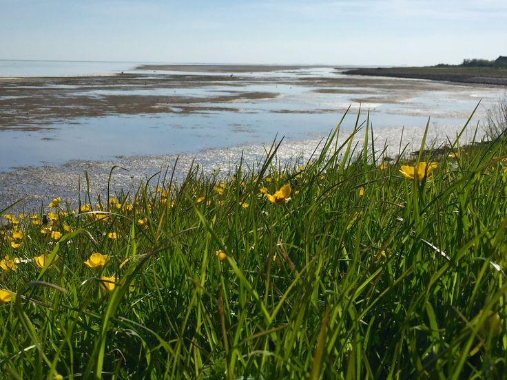 De dijk Waddenzee Vlieland