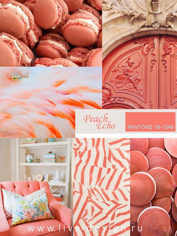 Модные и всевозможные дизайнерские сообщества активно используют оранжевый цвет уже не первый сезон.