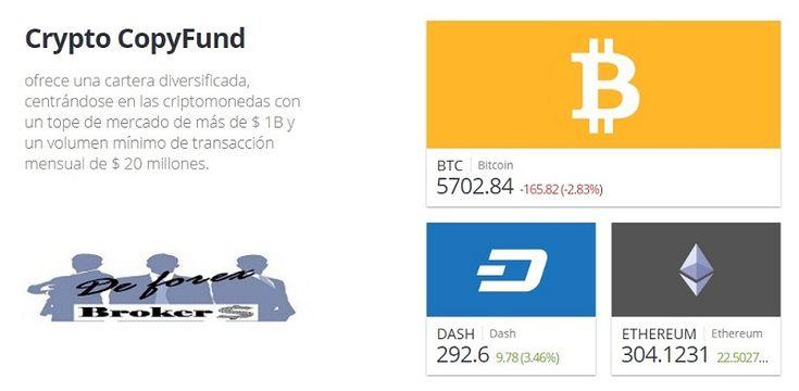 El Crypto CopyFund es el Fondo de Inversión en Criptodivisas accesible para cualquier inversor. Descubre como invertir en Criptodivisas de forma sencilla.