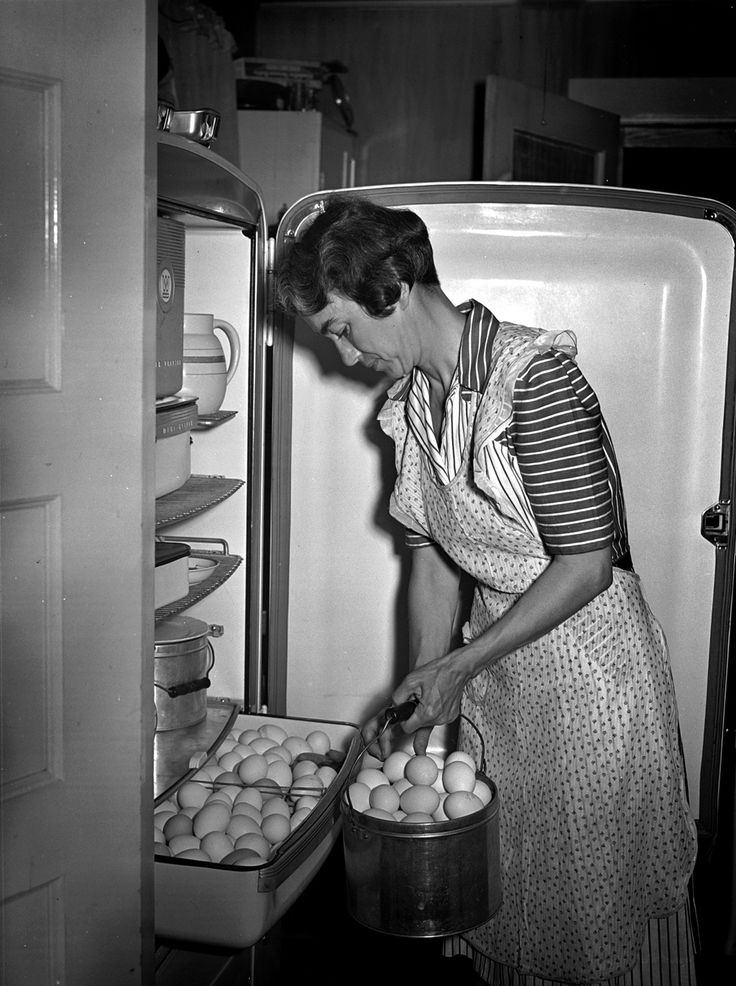 An electric refrigerator helps Mrs. Case keep her eggs fresh in Lauderdale County, Alabama. This photograph for the Tennessee Valley Authority was taken by Arthur Rothstein in June, 1942.