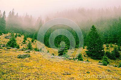 Stony landscape in Transylvania`s foggy mountains