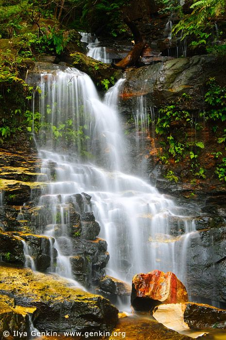 Lodore Falls Valley of the Waters Creek, Blue Mountains National Park New South Wales (NSW), Australia © Ilya Genkin