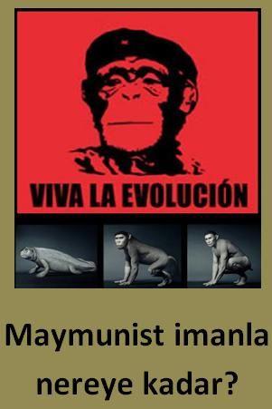 Evrim ve Big Bang gibi konular genellikle sağlıklı biçimde tartışılmaz. İdeoloji ve inançlar, felsefî tercihler bilim-SELLİK maskesiyle çıkar karşımıza.  Madde ve o Madde'ye yüklenen Mânâ maskelenir… Oysa perde arkasında tartışılan başkadır. İnsan'a, Hayat'a dair temel kavramlardır. Sadece et ve kemikten mi ibaretiz?  SADECE VE SADECE bir maymun türü müdür insan? BİLİM DIŞINDA bir insanlık yoksa Aşk yoksa, Sanat yoksa, Güzellik yoksa ve Adalet yoksa Hayat'ın anlamı nedir?