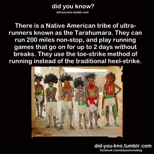 Tarahumara tribe can run 200 miles non stop | Did you know ...