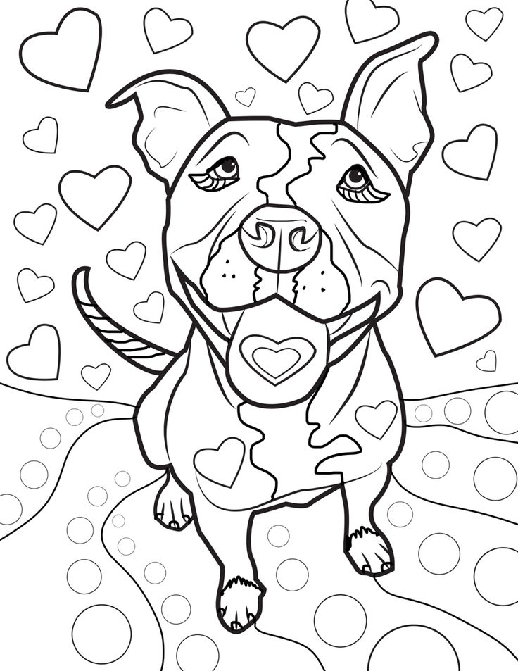 Pit Bull Dogs Adult Coloring Pages Books Vol 2 Colour Book Colouring In To Color Vintage