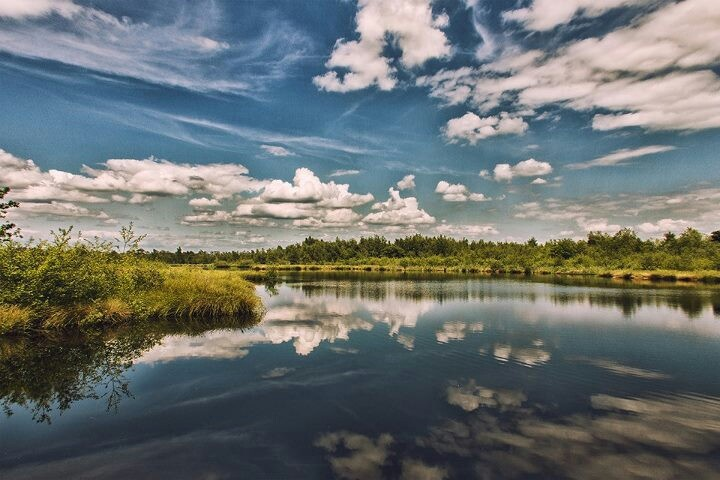 Nationaal park de Grote Peel, waar Limburg en Brabant samenkomen.