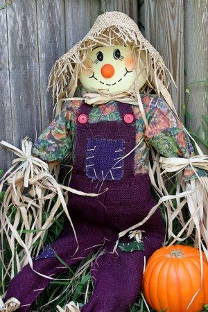 Cute Scarecrow | Cute scarecrow picture : is this one scaring anyone ?