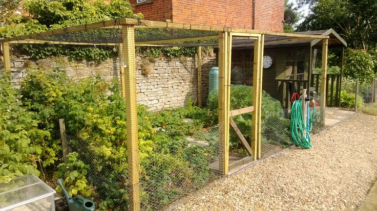 fruit cage - this is what I'd like to try for fruit trees, to protect from deer.