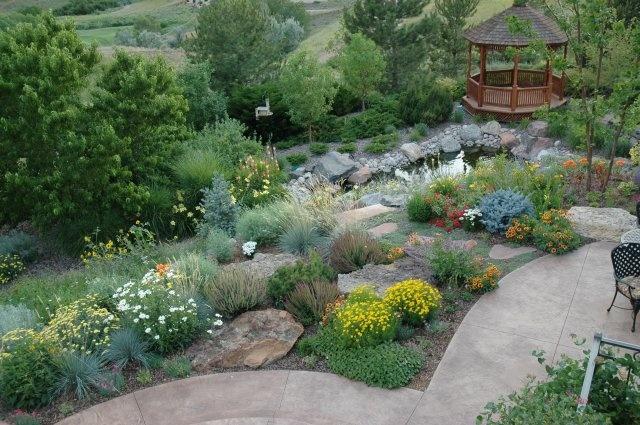 16 Best Images About Xeriscape Colorado On Pinterest