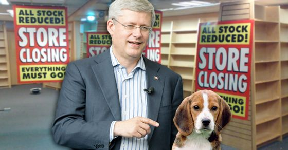 "10 reasons why Stephen Harper is the one who is too ""risky"" for Canada. http://www.pressprogress.ca/10_reasons_why_stephen_harper_is_the_one_who_is_too_risky_for_canada"