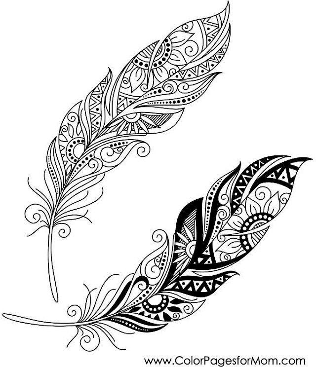 feathers coloring page 31