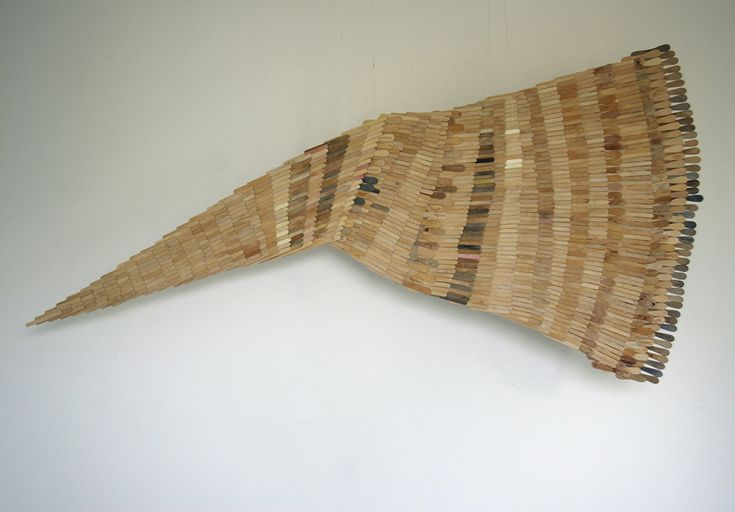 Wing of a penguine
