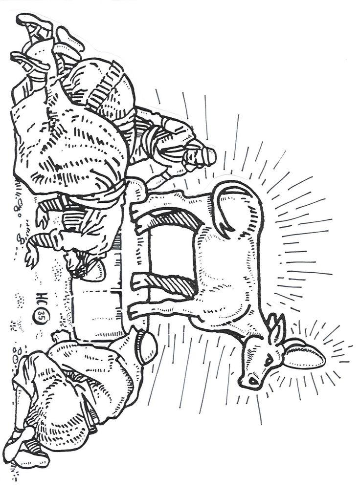 golden calf coloring pages - photo#11