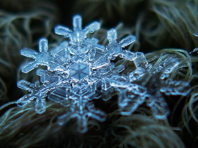 How to Take a Picture of a Single, Ultra-Magnified Snow Flake: one of the photographers who specializes in the highly technical art of snowflake imagery is Alexey Kljatov.  His Flickr page is full of close-up, highly magnified shots of snow flakes.  - The Atlantic