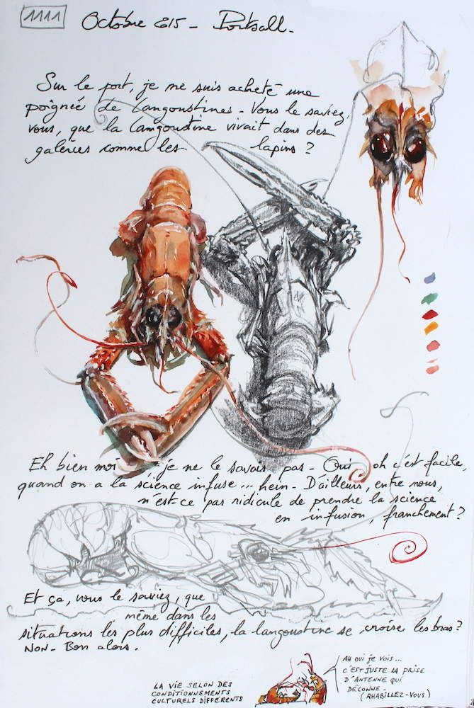 25 Best Ideas About Lobster Art On Pinterest