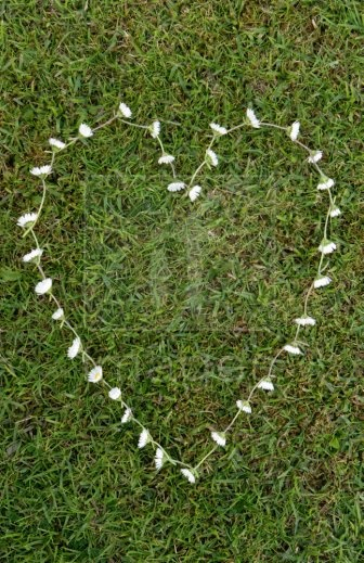 a daisy heart chain