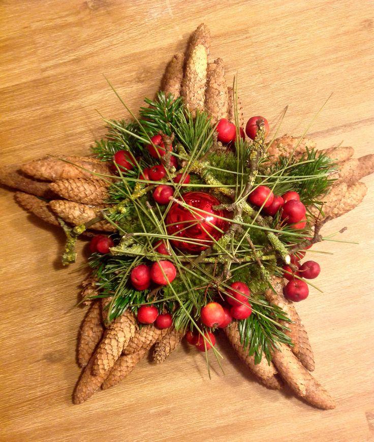 Ster met Picea kegels en Pinus naalden