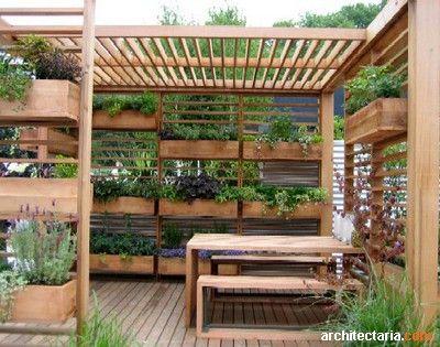 Vertical Garden Pergola