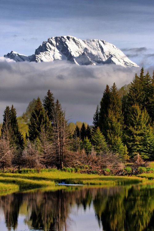 Schwabackers Landing . Grand Tetons national Park