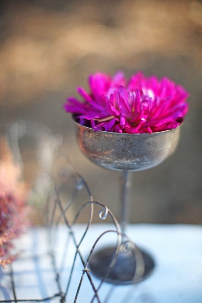 elegant: Galleries, Dinners Party, Color, Flower Photo, Desserts Bar, Weddings Flower, Eggs Cups, Photo Shooting, Purple Flower