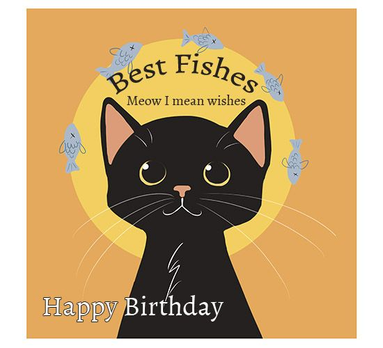 Happy Birthday To The Coolest Cat In Town Send Across Your Best Fishes With 123g Happybirthday Coo Cat Birthday Wishes Happy Birthday Black Birthday Wishes