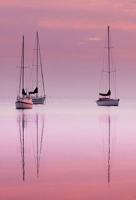 Pink Dawn. Pretty.