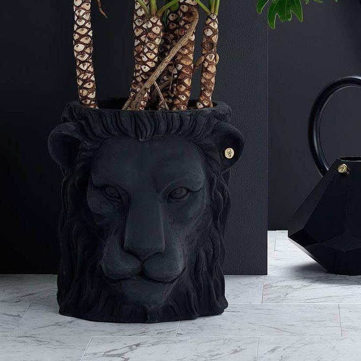 top3 by design - Garden glory - lion pot black