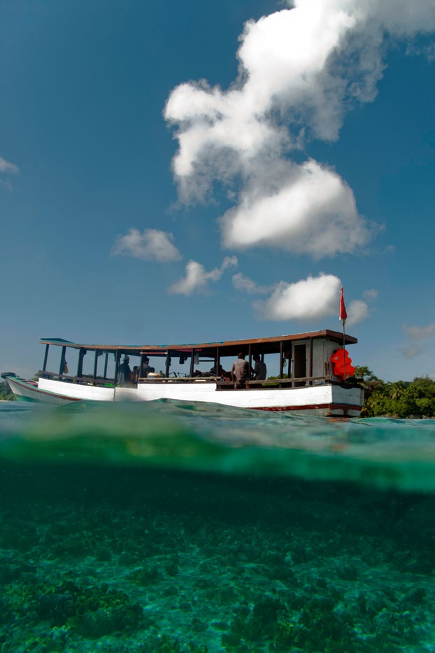 Above and below the surface of Wakatobi waters are two different worlds, yet equally amazing.