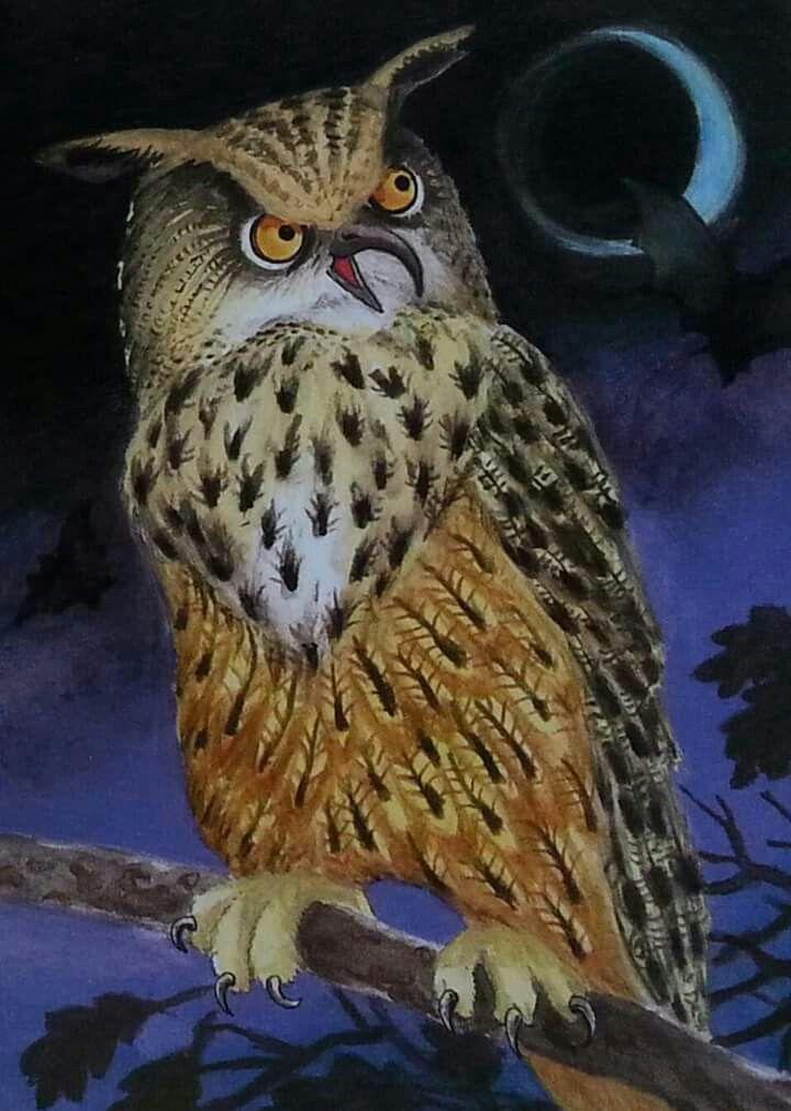 Bagoly bird painting by Gábor Emese