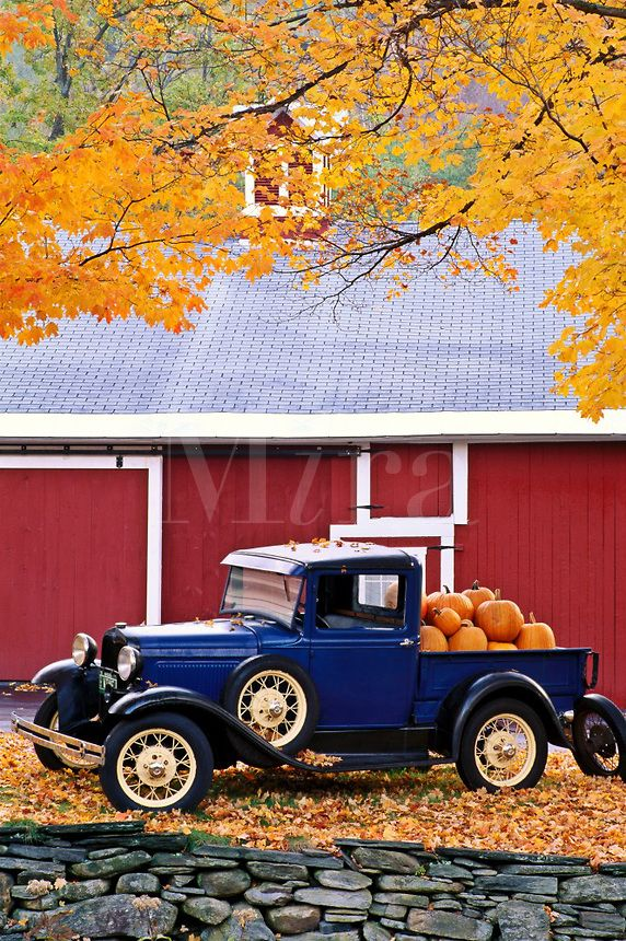 USA, Vermont. Antique truck with pumpkins in Autumn